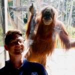 "UCLIC Research Seminar 17th August: Marcus Carter (University of Sydney) on ""Kinecting with Orangutans"""